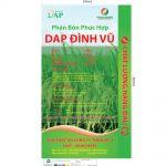 Tui-phan-DAP-Dinh-VuMS